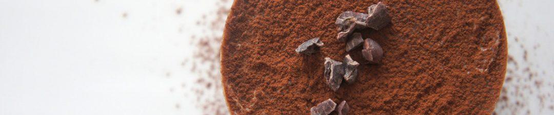 Chocolate paleo protein powder