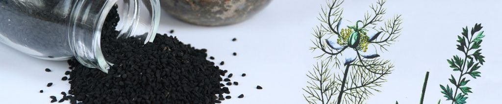 Best Black Seed Oil Guide