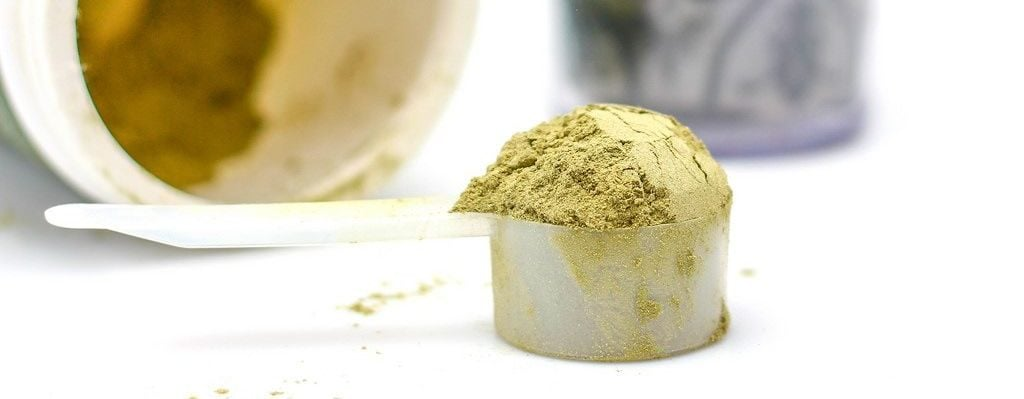 A heaping coop of hemp protein powder
